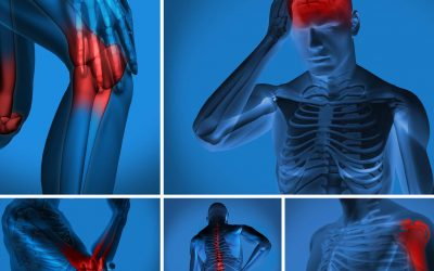 Les aliments anti-inflammatoires ou comment réduire ses douleurs avec son assiette